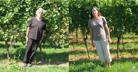 les fujak vinyard gnap de 2019 natural inclination xx web