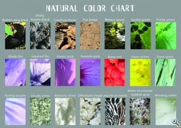 thaens natural color chart gnap vera thaens tekengebied 1 web